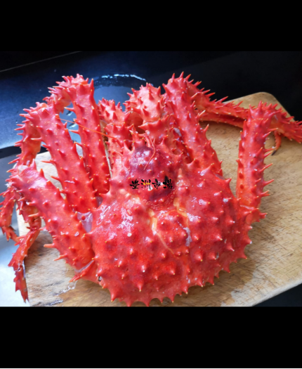 智利皇帝蟹-熟 (隻) Chilean King Crab Cooked