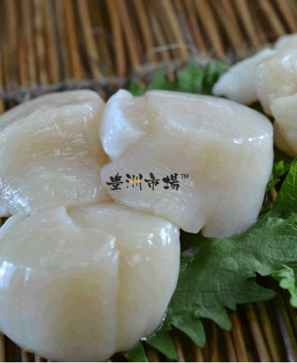 北海道特級帶子刺身 (3S) Hokkaido Scallop Sashimi