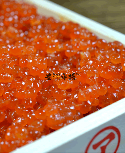 日本醬油漬三文魚籽 Japan Salmon Roe