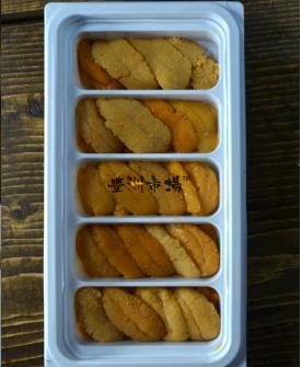 紫海膽 - 膠盒 Purple Uni