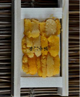 紫海膽 - 小 (木板) Purple Uni